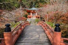 有槭树的秋天颜色的Daigo籍寺庙在京都,日本 免版税库存图片