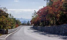有槭树的秋天风景路 免版税库存图片
