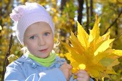有槭树花束的女孩在秋天公园离开 免版税库存图片