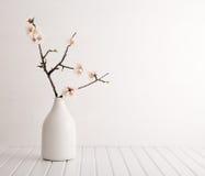 有樱花的花瓶 库存图片