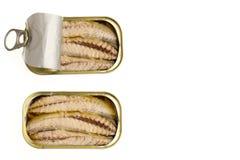 有橄榄油的罐装金枪鱼内圆角 库存照片