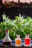 有橙色和红色花架的辣芳香油的三个小瓶在桌上的在好光反对绿色背景 图库摄影