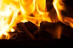 有橙色和黄色火焰的灼烧的森林在火炉关闭 免版税库存图片