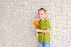 有橙色大丁草的男孩 库存照片