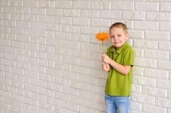 有橙色大丁草的男孩 库存图片