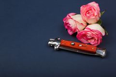 有橙色把柄的折叠的刀子在与玫瑰的蓝色背景 库存图片