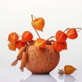 有橙色花的花瓶 图库摄影