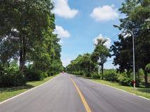 有此外绿色树的柏油路 库存照片
