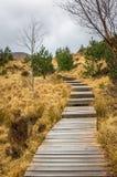 有步和多云天空的木走道 免版税图库摄影