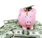有毕业盖帽的存钱罐 免版税库存照片