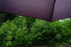 有水下落的细节伞 图库摄影
