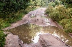 有水坑的森林公路 图库摄影