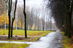 有水坑的老路在工业区在秋天 免版税库存照片
