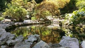 有水池的假山花园在植物园里 免版税库存图片