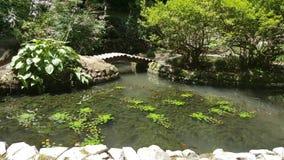 有水池的假山花园我 图库摄影