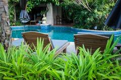 有水池的热带庭院和在花小插图的太阳懒人  免版税图库摄影