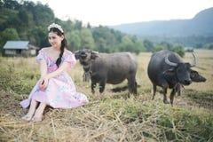 有水牛的美女 库存照片