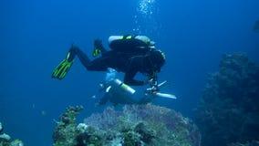有水肺的游泳在水面下在珊瑚礁附近的潜水者和照相机 4K 股票录像