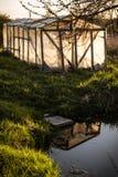 有池塘的小温室和反射在一个庭院里在夏天 免版税库存图片
