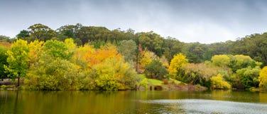 有池塘的秋天公园 免版税库存图片