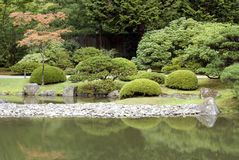 有池塘的美丽如画的日本庭院 库存照片
