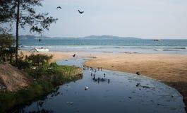 有污染问题和乌鸦的恶劣的亚洲村庄 塑料瓶、袋子和污水滴下了直接地入海洋 图库摄影