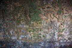有污点的老织地不很细五颜六色的墙壁 免版税图库摄影