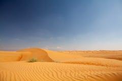 有沙丘和bue天空的纯净的沙漠在背景中 图库摄影