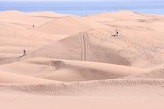 有沙丘的沙漠在大加那利岛西班牙 库存图片
