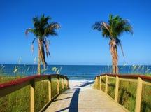 有沙子、海洋和棕榈树的海滩木板走道 免版税库存照片