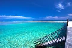 有沙滩的热带海岛用棕榈树和tourquise清楚的水 免版税图库摄影