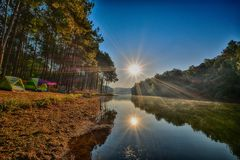 有河和两太阳的森林 图库摄影