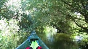 有沼泽植被的在多瑙河三角洲,罗马尼亚美好的安静的水道 股票视频
