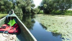 有沼泽植被的在多瑙河三角洲,罗马尼亚美好的安静的水道 影视素材