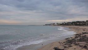 有泡沫似的波浪的海和与清早海草的沙滩 股票视频