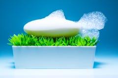 有泡沫的肥皂以在箱子的一条鱼的形式在蓝色背景的绿草 库存照片