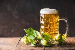 有泡沫盖帽的啤酒杯在桌上的用在黑暗的土气背景的新鲜的蛇麻草 免版税图库摄影