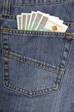 有波兰金钱的牛仔裤 库存照片