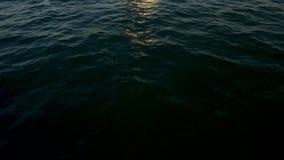 有波浪的海和清楚的天空镇定海洋与小波纹的水表面 生动的蓝色海波浪水摘要背景 股票录像