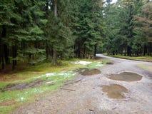 有泥的土路在乡下 免版税库存图片
