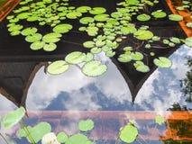 有泰国传统木房子屋顶和多云蓝天的反射的荷花池 图库摄影