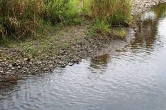 有流动的水和绿色植被的岩石小河银行 库存照片