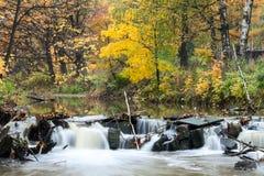 有流动的河水的金黄森林通过石头秋天,长的曝光 免版税图库摄影