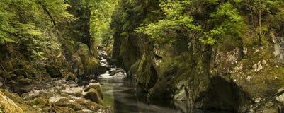 有流经深刻的边的河的惊人的风景全景 免版税库存图片