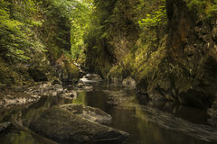 有流经深刻的边的河的惊人的风景全景 库存照片