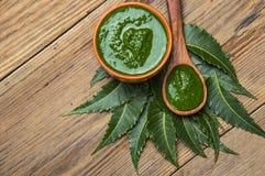 有浆糊的医药neem叶子 库存图片
