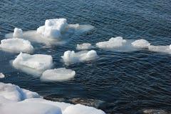 有浮冰的冬天海 库存图片