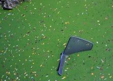 有浮动的椅子的绿色池塘 免版税库存照片