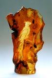 有浮雕的贝壳 免版税库存照片