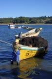 有海草的小船 库存照片